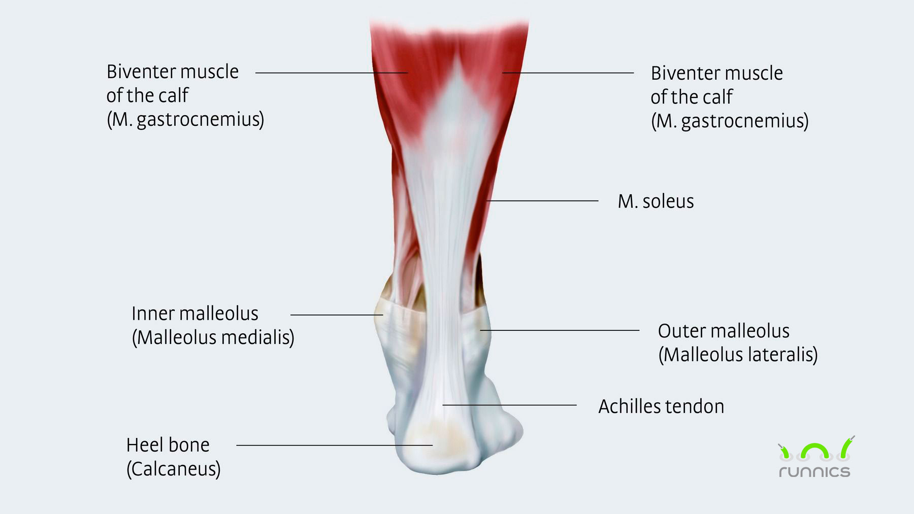 4 Easy Exercises For Fixing Achilles Heel